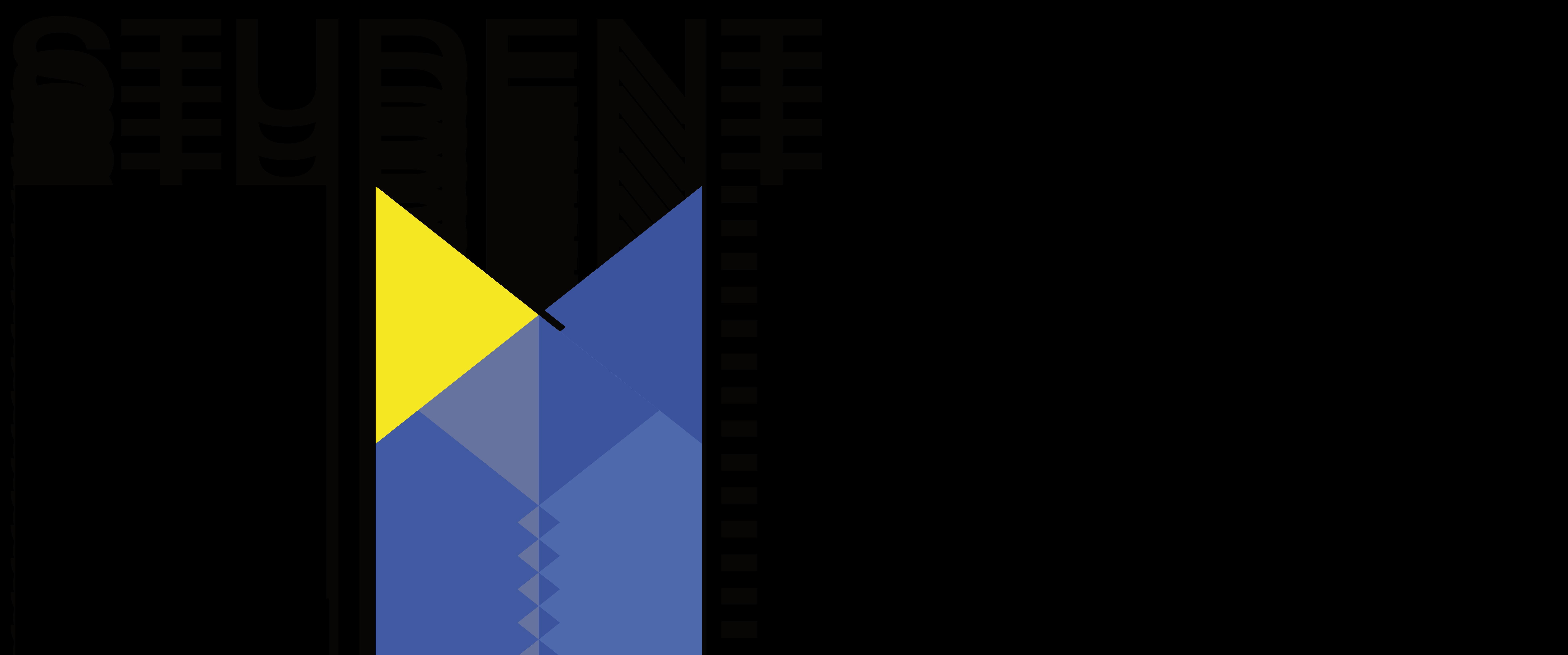 logo X poziom duze